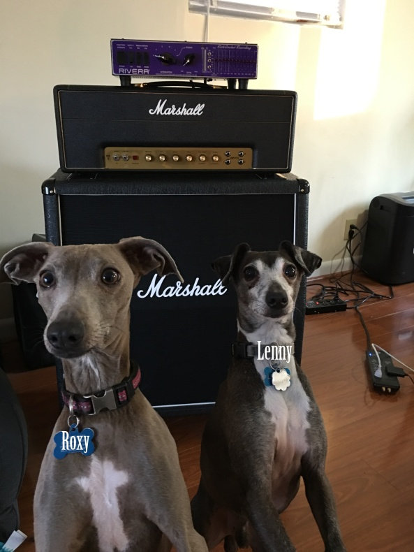 Lenny and Roxy in front of Marshall 1987XAmp with Marshall 1960AV cabinet and Rivera RockCrusher - tags fixed