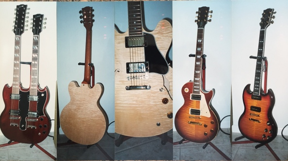 Guitars I owned at Mizer Park